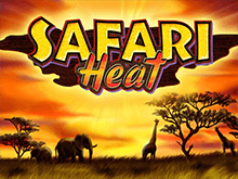 Safari Heat в Вулкан Делюкс