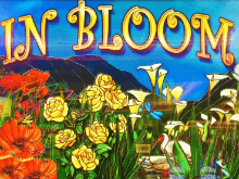 Игровой автомат In Bloom в онлайн-казино Вулкан